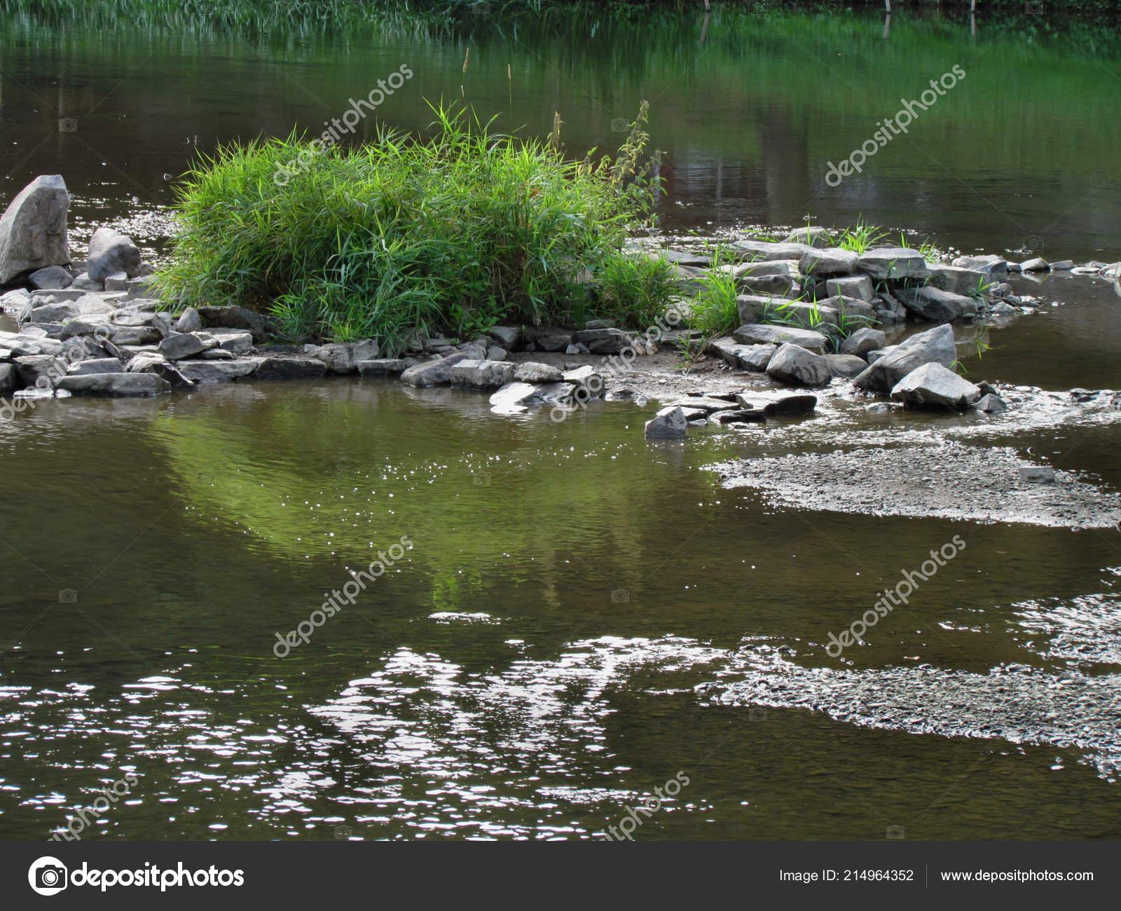 Tuin vijver met helder water stenen eiland met een gazon van gras