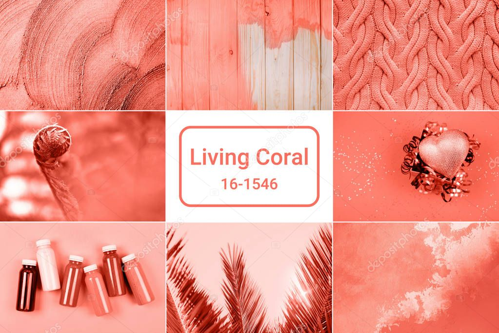 Creative collage inspired by Living Coral - Color of the Year 2019.