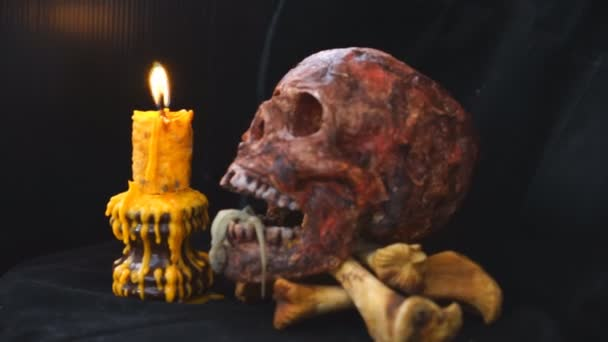 Lizard in the skull mouth, Occult Ceremony with Candles, Ancient Books, Skulls and a homemade devils game