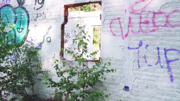 zdi s graffiti zbourané budovy
