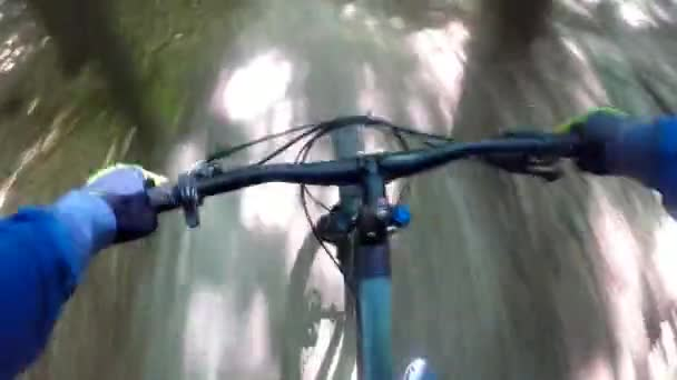 MTB kolo na stezce v letní sezóně;