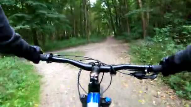 MTB kolo na stezce v letní sezóně