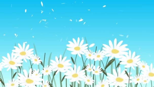 Pretty Daisy květiny tančící ve větru - animace