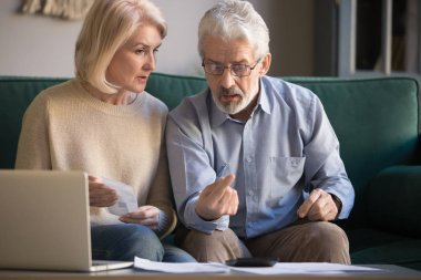 Elderly husband and wife calculate finances paying bills online