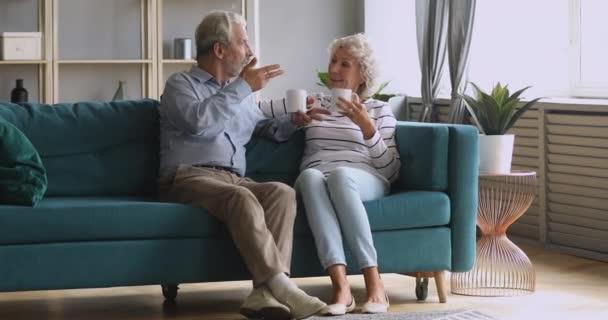 Rentner-Ehepaar unterhält sich beim Teetrinken im Wohnzimmer