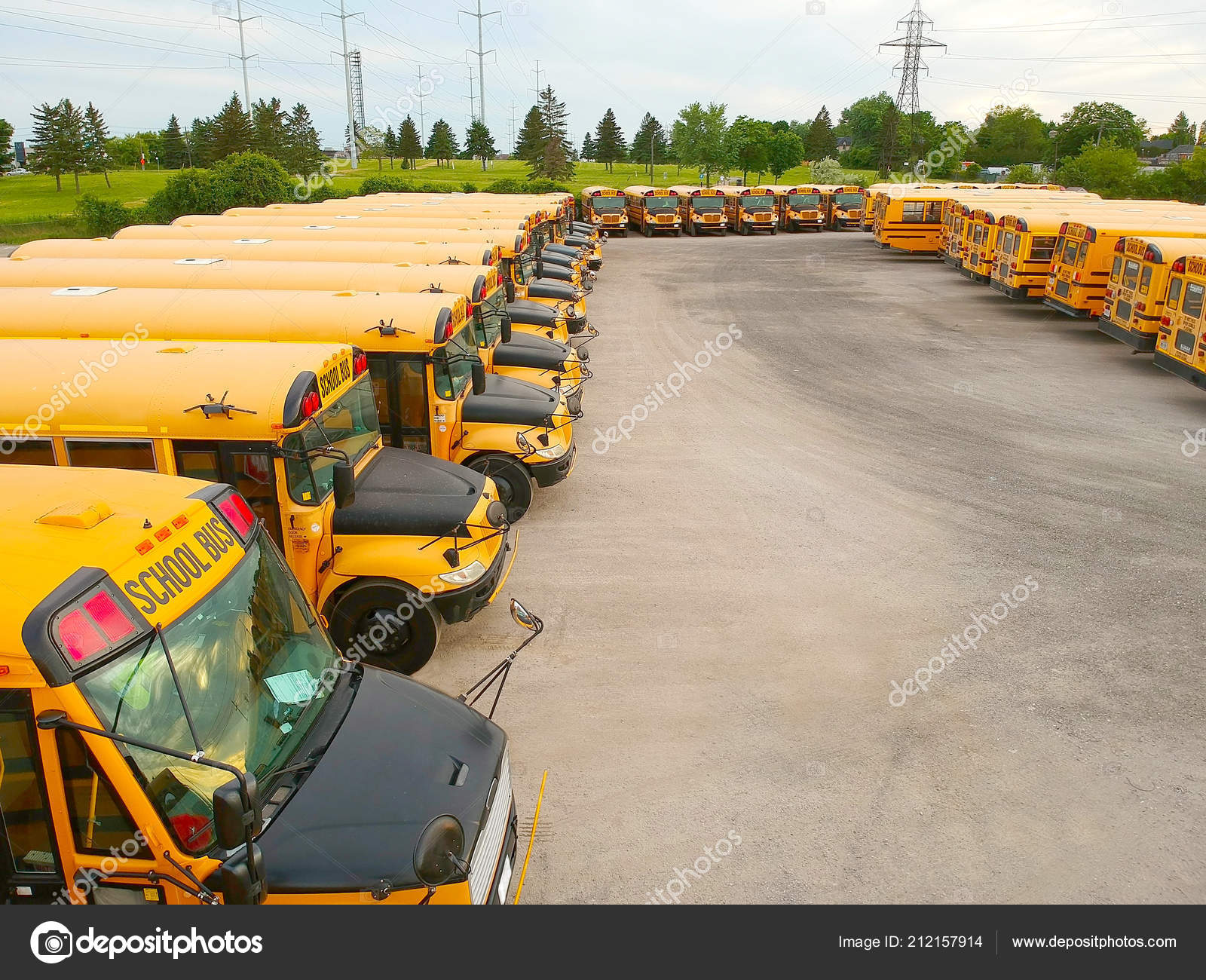 yellow school buses parking evening front side view parked american
