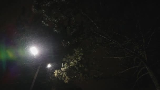 Image result for midnight under the streetlamp