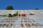 Srebrenica memorial. Name by name and with a wilted rose Bosnia and herzegovina.