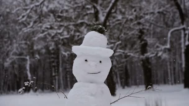Sněhulák. Sněhulák na které padá sníh