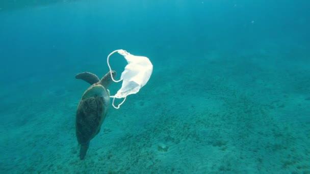 Medizinische Maske. Eine medizinische Maske schwimmt im Meer, im Hintergrund schwimmt eine große Schildkröte.