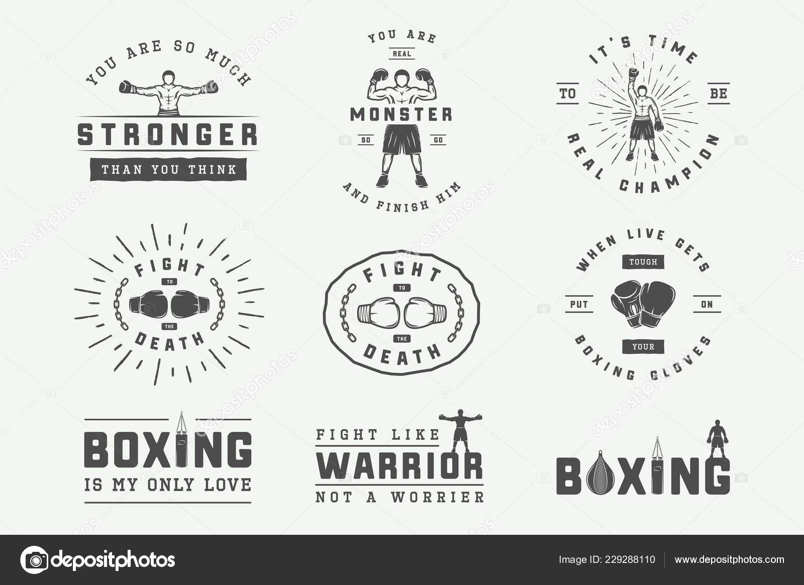 Boxeo Artes Marciales Insignia Insignias Etiquetas Estilo