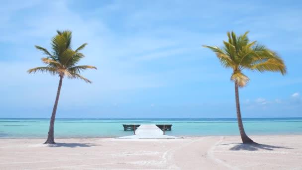 Dvě palmy na bílém písku na pláži na ostrově. Tyrkysová klidná voda a dřevěné molo u břehu. Krásné tropické zázemí. Dovolená v Punta Cana
