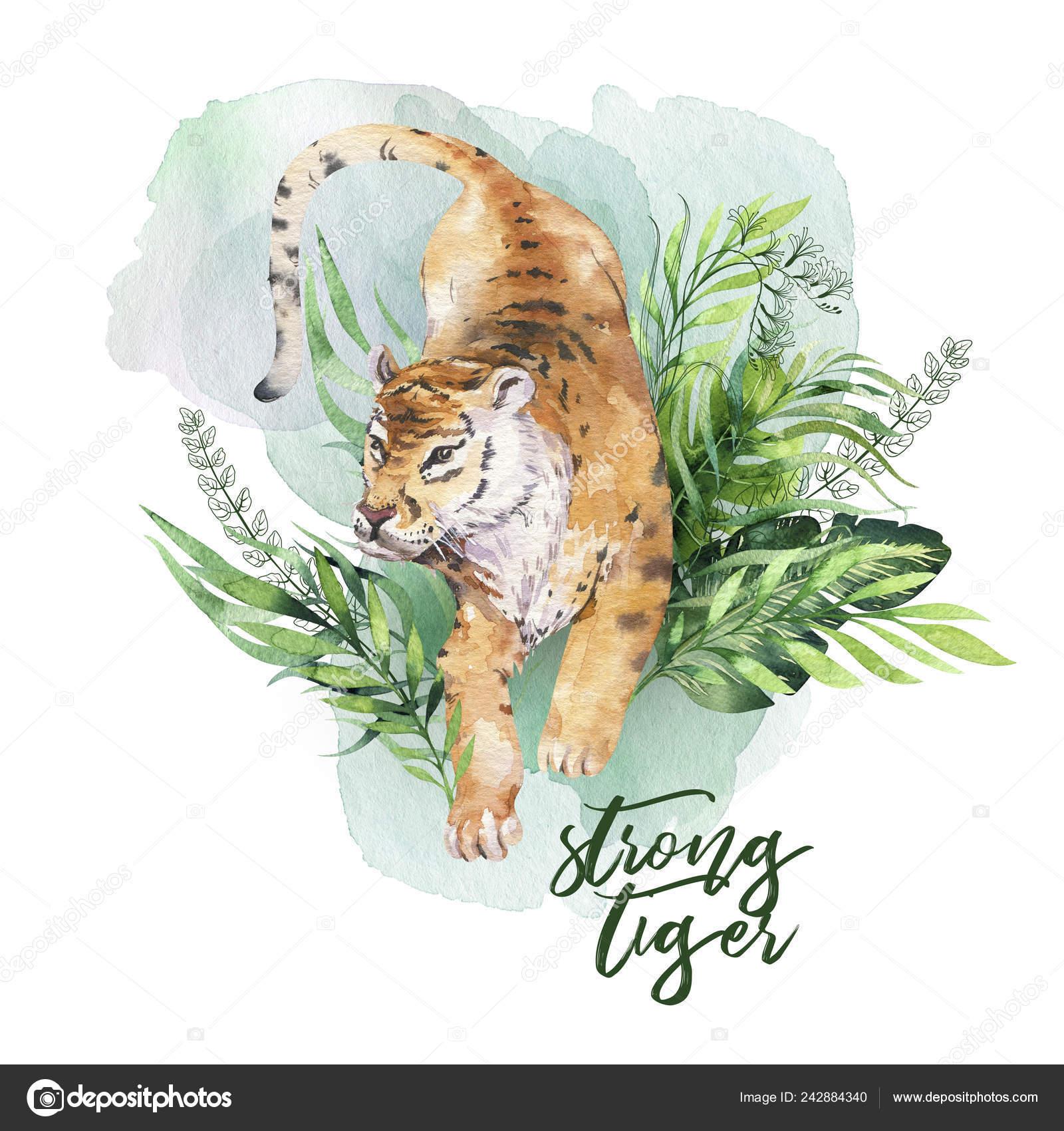 Aquarell Tiger Illustration Und Sommer Paradies Tropische Blätter