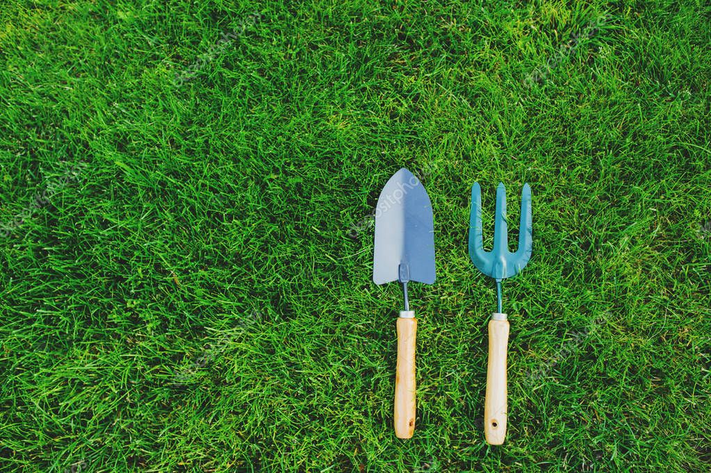 garden tools on green lawn background. Seasonal spring or summer yard work concept, growing and seeding.