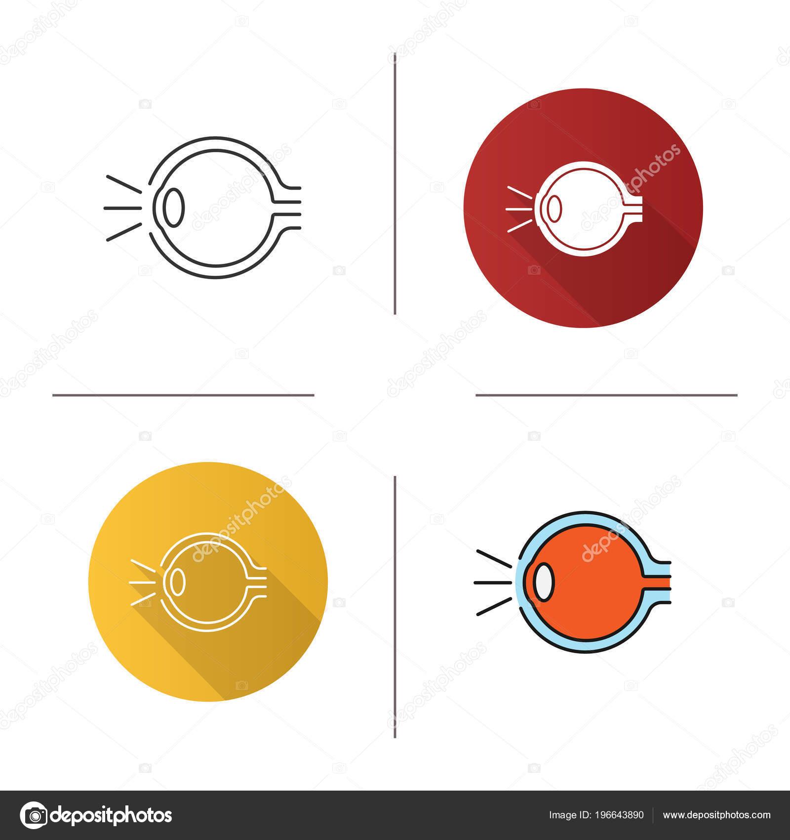Conjunto Icono Anatomía Del Ojo Diseño Plano Lineal Estilos Color ...