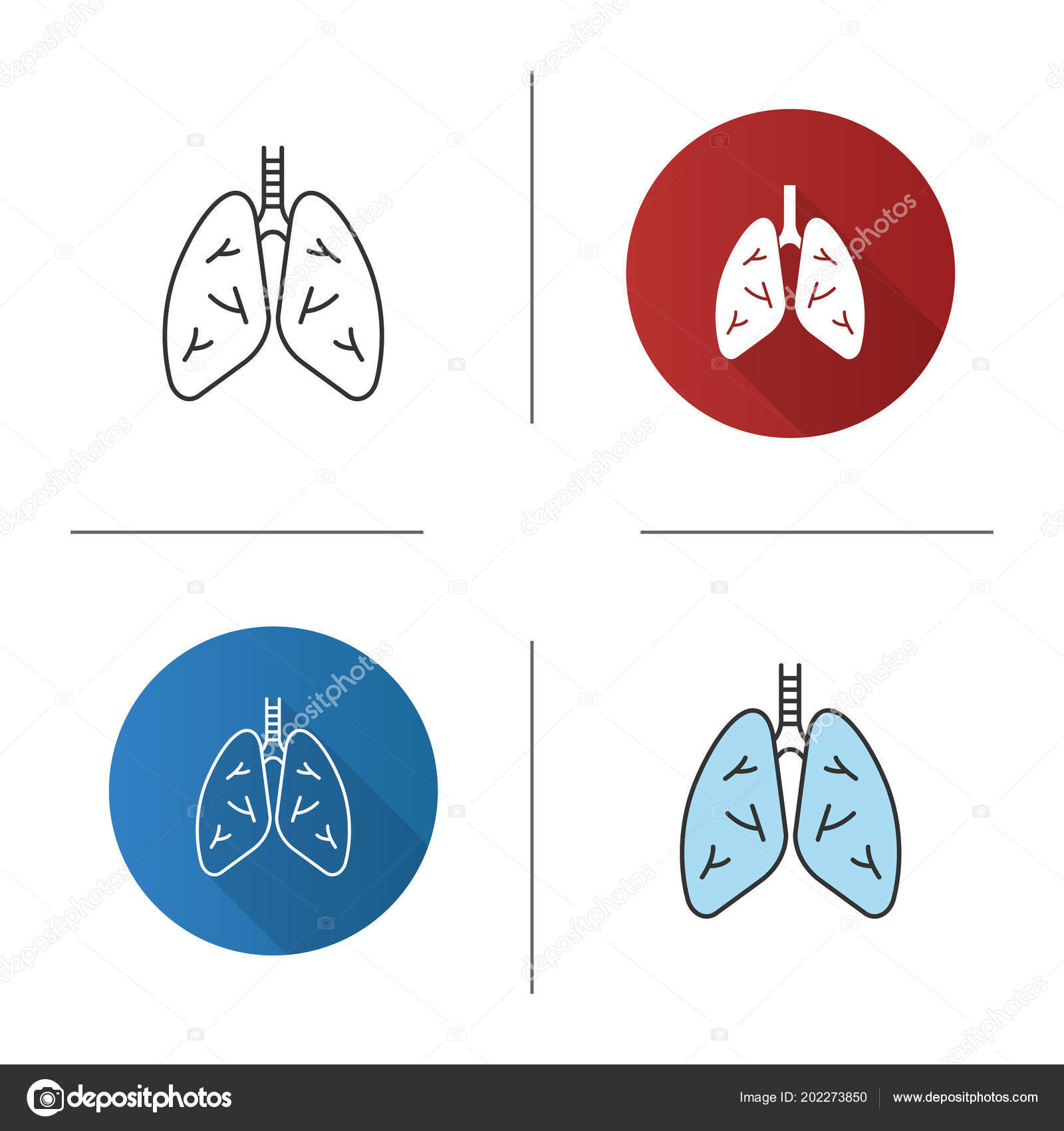 Human Lungs Icon Respiratory System Anatomy Flat Design Linear Color