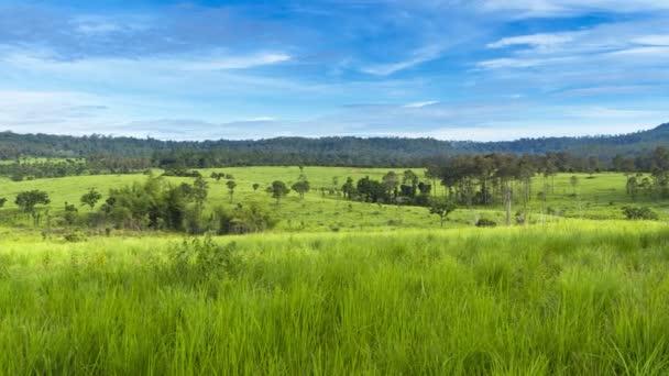 Ködös és felhős ellen a hegyi zöld mező helyét tropicana ország északra Thaiföldön