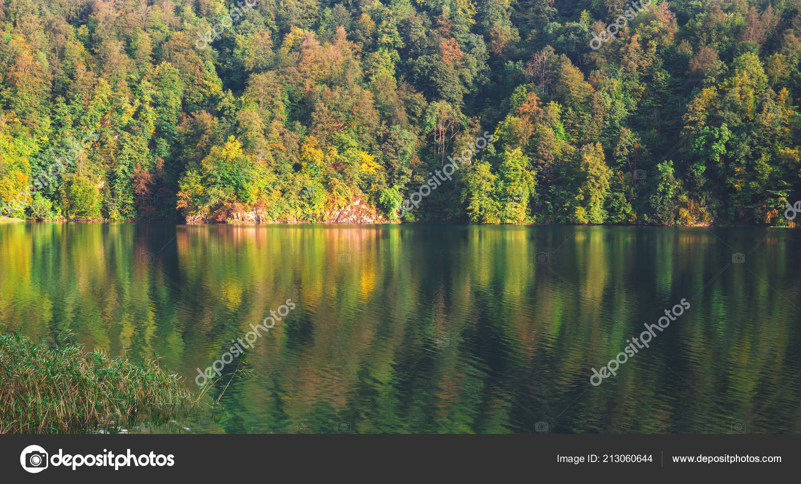 Crystal Clear Lake Forest Park Reserve — Stock Photo