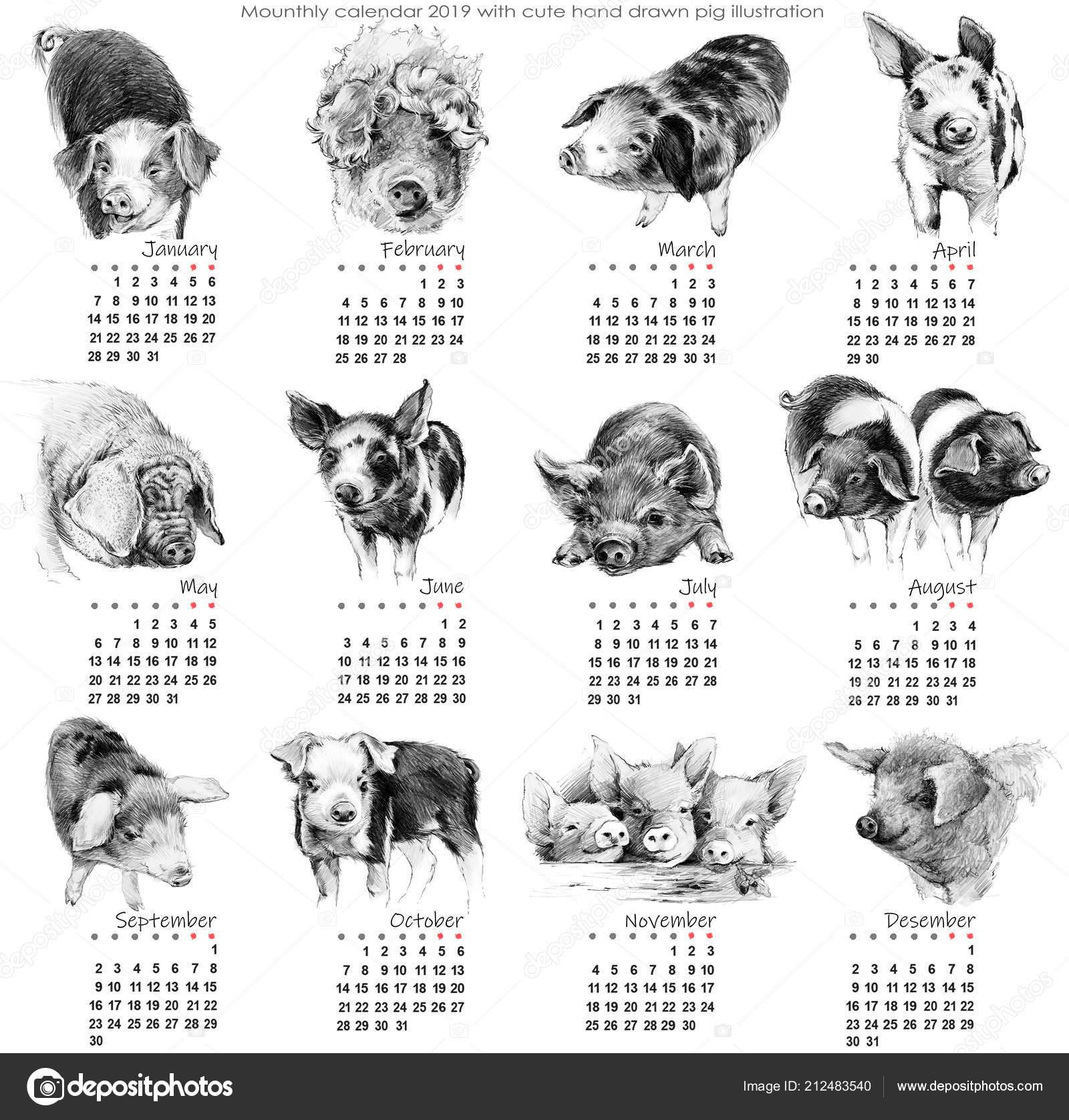Calendario Giugno Luglio Agosto 2019.Calendario 2019 Calendario Mensile Carino Con Illustrazione