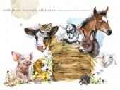 Fotografia collezione di animali nella fattoria dellacquerello