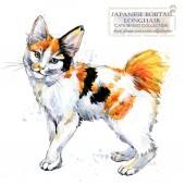 Fotografie Japanese Bobtail Longhair cat. watercolor home pet illustration. Cats breeds series. domestic animal.