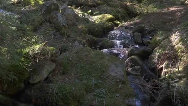 Rapid waterfall with several cascades in the Carpathian Mountains in slo-mo