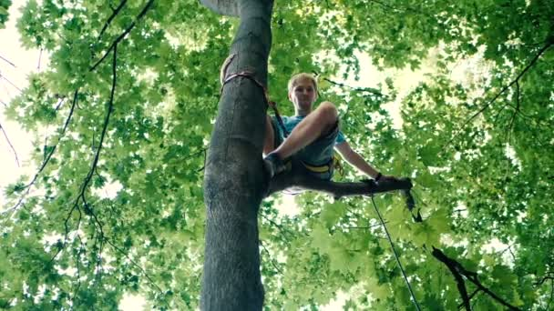 Young man sitting in a tree with a long rope and belts in summer in slo-mo