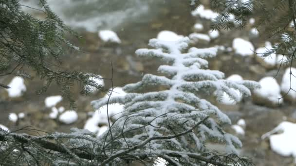 Snowflakes falling on a rushing runlet in the Carpathians in winter in slo-mo
