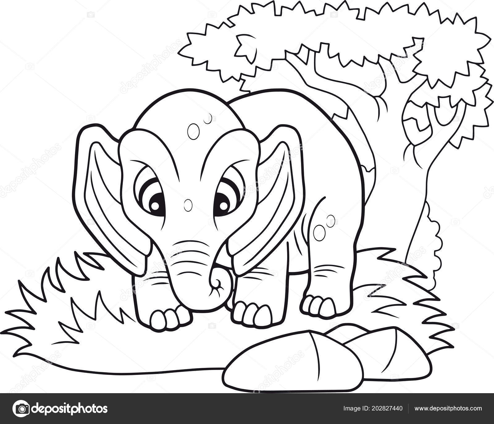 Cartoon Cute Elephant Funny Illustration Coloring Book — Stock ...