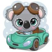 Cartoon Koala boy in glasses goes on a Green car