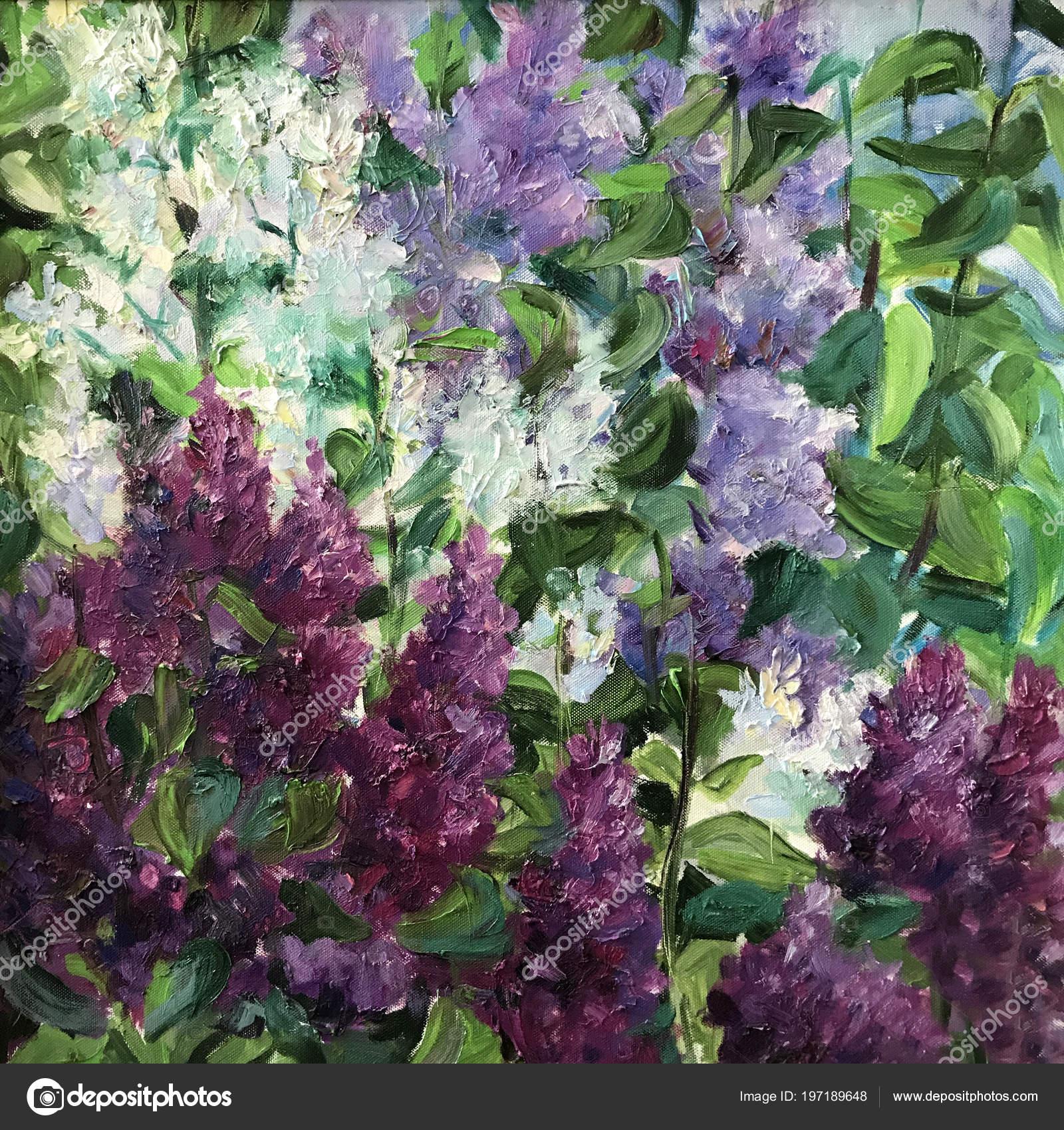 Dibujo Flores Color Púrpura Gran Arbusto Lila Violeta Árbol Nuevo ...