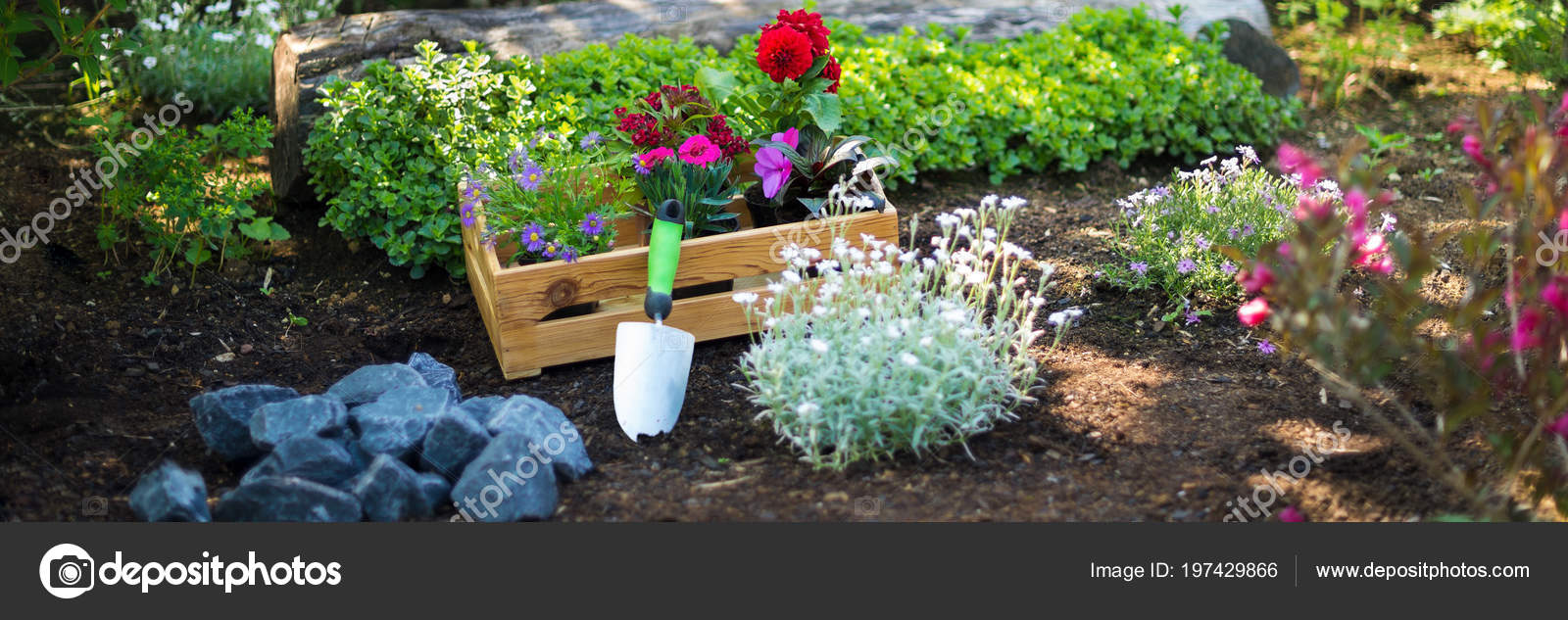 Horticulteur Val D Oise gardening crate full gorgeous plants garden tools ready