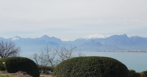 Winterpark und die ruhige Oberfläche des Mittelmeeres. Truthahn