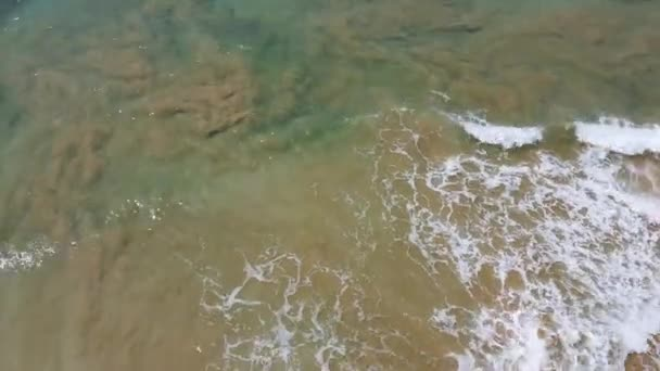 Aerial drone footage of surfers waiting for the next ride on the big ocean wave on beautiful aerial coastline gradient