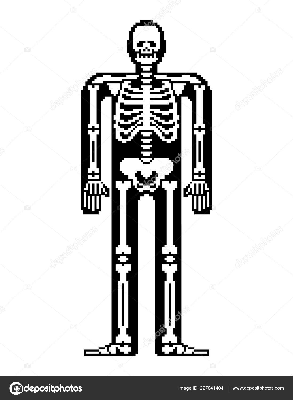 Skeleton Pixel Art Skull Bones Anatomy Bit Pixelate Pelvic Bone