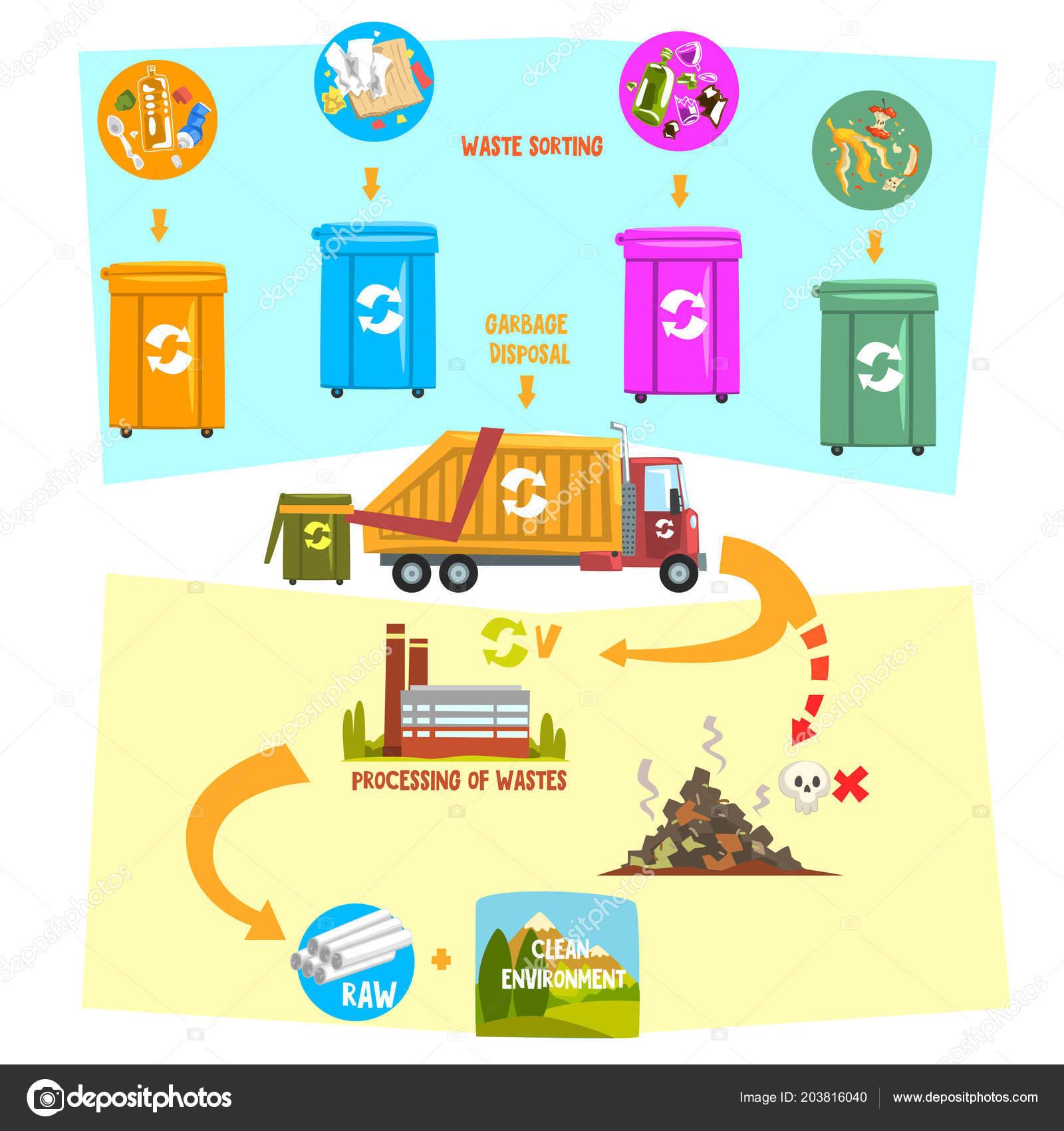 Processo De Reciclagem De Lixo Contentores De Transporte Para A