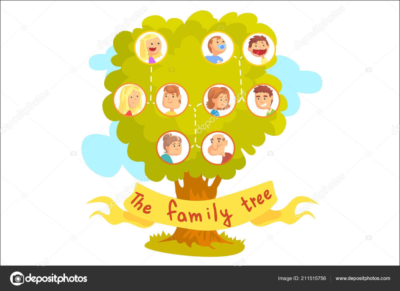 Árbol genealógico con los retratos de familiares, vector ilustración ...
