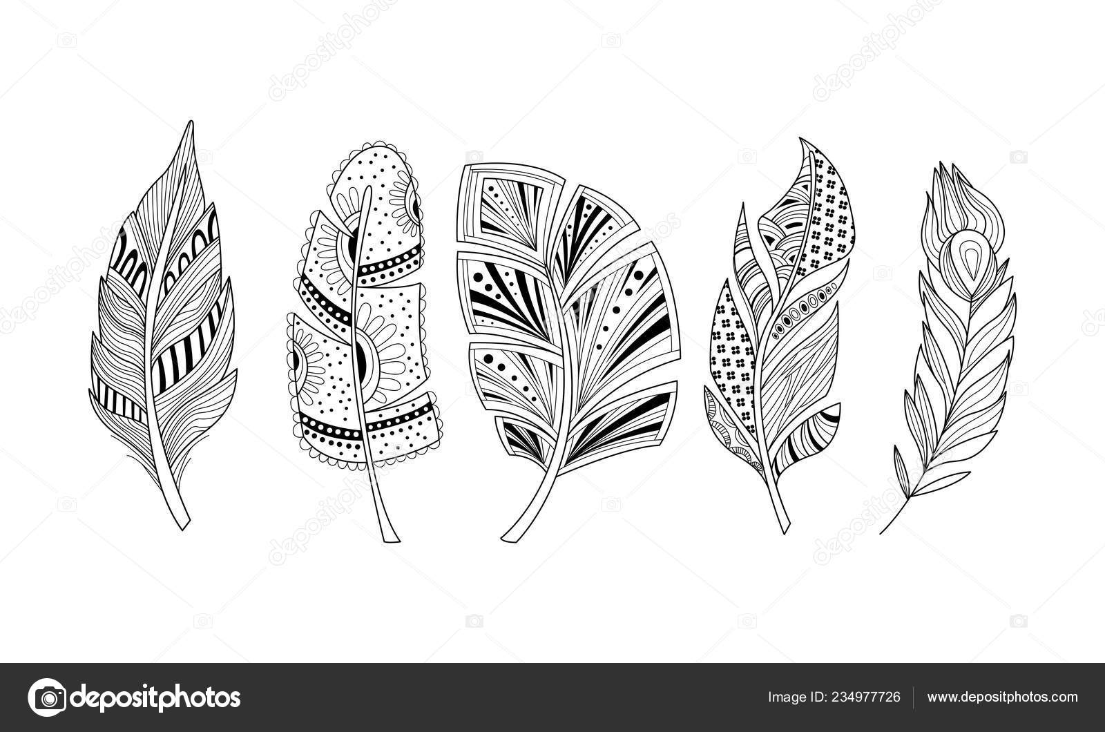 Stylized feathers set, black and white tribal, artistically