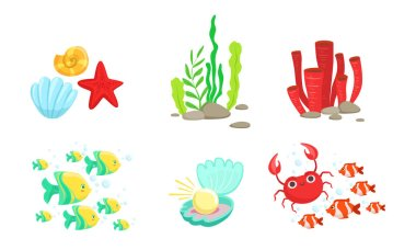 Underwater World Elements Set, Tropical Fishes, Algae, Corals, Crabs, Sea Shell Vector Illustration