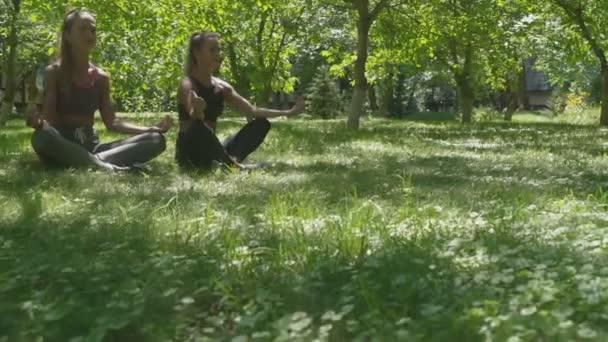 A nők lótuszpozícióban ülnek és a zöld réten meditálnak a parkban.
