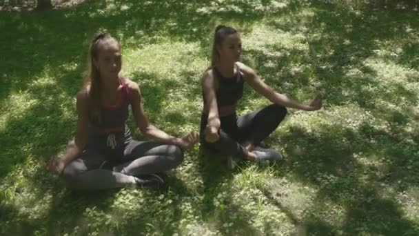 Top view of Women are sitting in lotus position and meditating