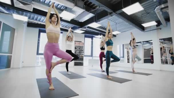 Yoga students are doing balance tree pose while exercising in modern wellness studio.