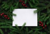 Větve stromů jedle zdobené červenými vánoční bobule jako hranice na bílém papíru, kopie prostor