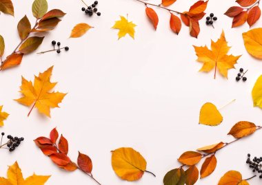 Autumn background with round frame with white blank space