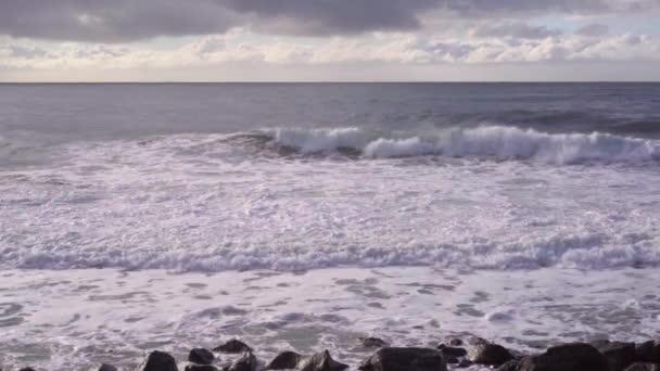 moře vlna slow motion Racek letu beach