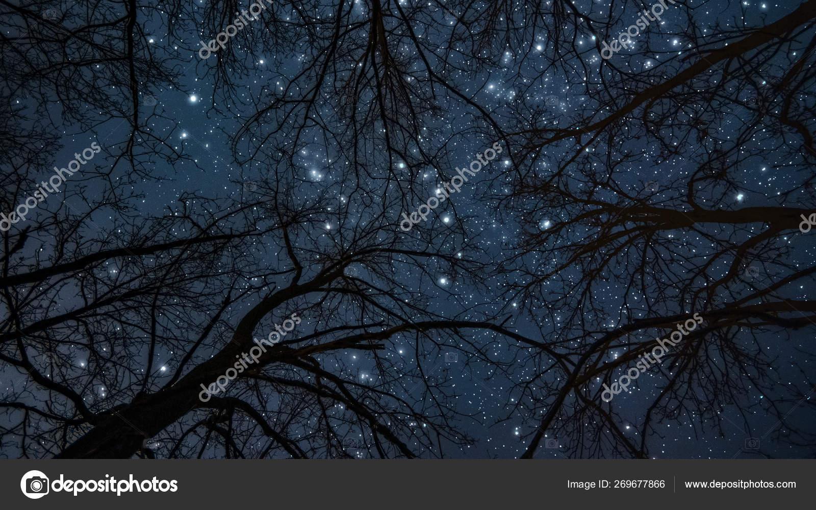 Night Landscape Milky Way Star Sky — Stock Photo © Sokolpixel #269677866
