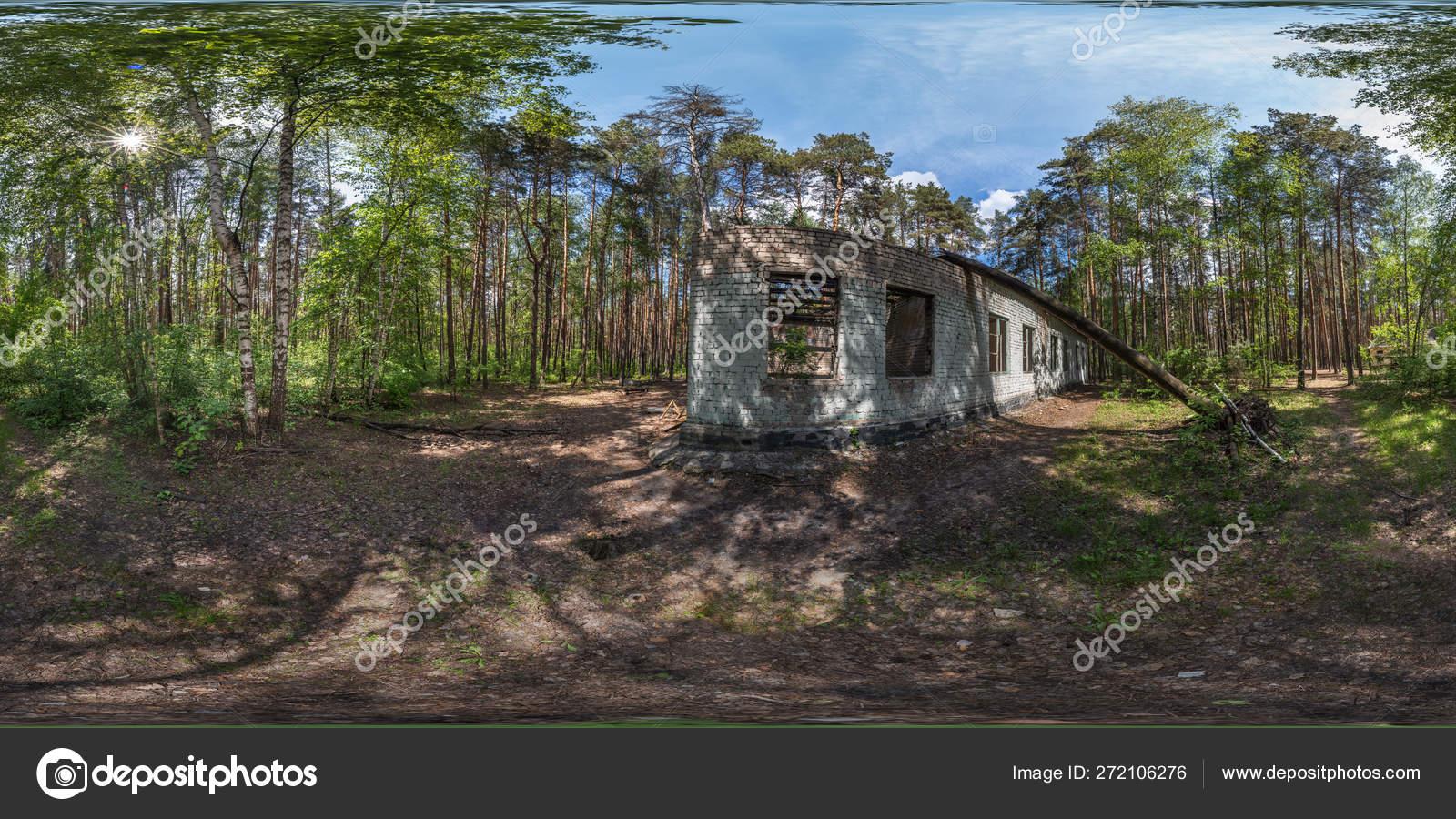森の中に放棄された建物 森の真ん中にある古い建物の遺跡 松林に