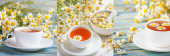 Set of images herbal tea of chamomile flower and a bouquet of Matricaria chamomilla. Healthy tea concept