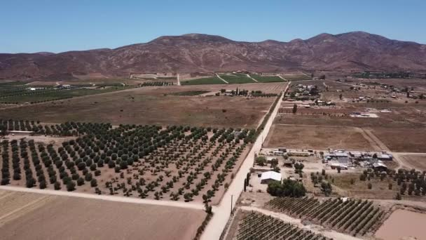 Flyover of valle de guadalupe dirt roads of the wine valley of baja california