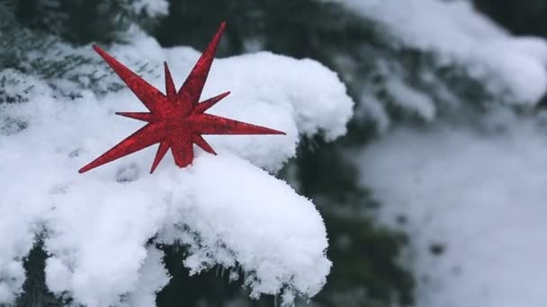 Red Christmas star over snow. Winter background.